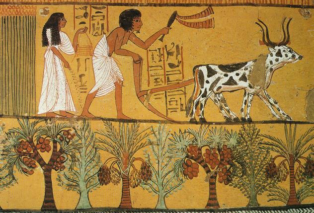 Il cibo degli Egizi spiegato ai bambini e allebambine