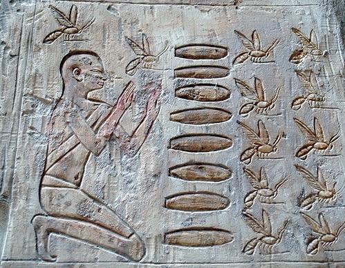 Api e miele Antico Egitto